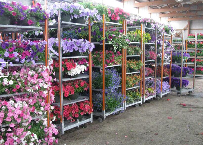 Light duty movable flower trolley for greenhouse